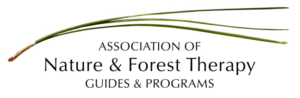 Forest therapy association